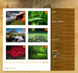 sGallery Blogger Template